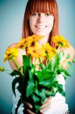Beautiful young redhead girl Royalty Free Stock Photos