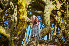 Beautiful young romantic girl sitting in Presidio park in San Francisco Stock Images