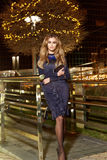 Beautiful young sexy blonde wearing evening makeup in elegant fitting dress fashionable stylish expensive fur coat walk night stre Stock Photography