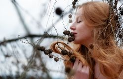 Beautiful young sexy red-haired girl enjoys smiling at pines and her beautiful gorgeous red hair catching in a pine twig stock images