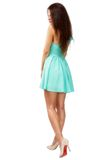 Beautiful young slim brunette woman wearing a blue dress isolate Stock Photos