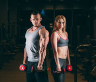 Beautiful young sporty couple showing muscle and workout in gym dumbbell Stock Images