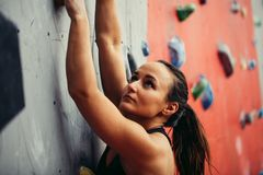Beautiful young strong woman climbing on red artificial wall top view. stock photos
