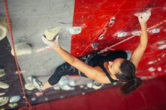 Beautiful young strong woman climbing on red artificial wall top view. Beautiful young strong woman climbing on rock artificial wall top view. Female climber royalty free stock images