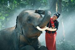 Beautiful young Thai woman northeast style is enjoy dancing and playing with elephant in the jungle stock image