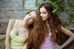 Beautiful young twins outdoors Royalty Free Stock Photography