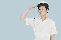 Beautiful young US Navy officer saluting over light blue background Royalty Free Stock Photo