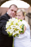 Beautiful young wedding couple Royalty Free Stock Photography