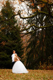 Beautiful young wedding couple stand happy together in a park in Royalty Free Stock Images