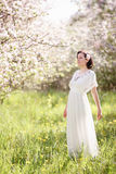 Beautiful young woman in apple blossom garden Stock Photo