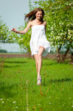 Beautiful young woman in apple tree garden Stock Photography