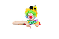 Beautiful young woman as colorful clown. Beautiful young woman as funny clown - colorful portrait Stock Images