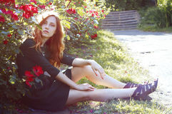 Beautiful young woman with auburn hair and green eyes stock photo