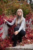 Beautiful young woman in autumn. Beautiful young woman sitting in autumn park Royalty Free Stock Photos