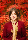 Beautiful young woman. Autumn portrait. Beautiful young woman in the red sweater on a background of red leaves royalty free stock image