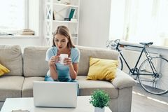 Beautiful young woman. Enjoying hot drink and using laptop while resting on the sofa at home royalty free stock photography
