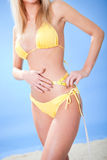Beautiful young woman in bikini Stock Images