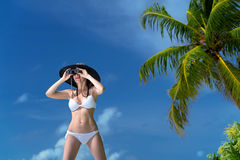 Beautiful young woman in bikini looking through binoculars at the tropical beachgainst starfish closeupops closeup Royalty Free Stock Image