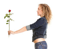 Beautiful young woman blonde in jeans romantic red rose isolated Royalty Free Stock Image