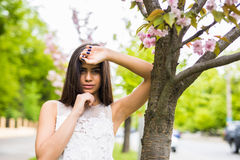 Beautiful young woman in blooming sakura blossoms garden Royalty Free Stock Images