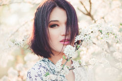 Beautiful young woman in blooming sakura Royalty Free Stock Photography