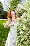 Beautiful young woman with blossom Royalty Free Stock Images
