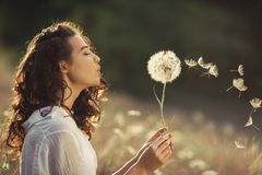 Beautiful young woman blows dandelion in a wheat field in the summer sunset. Beauty and summer concept stock photo