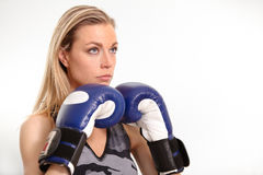 Beautiful young woman with boxing gloves Stock Images