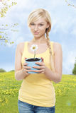 Beautiful young woman with chamomile. In flowerpot stock image