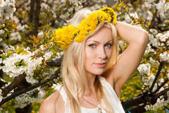 Beautiful young woman on cherry plantation in spring - cherry bl Royalty Free Stock Image