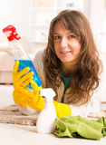 Beautiful young woman cleaning her house Stock Images