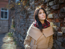 Beautiful young woman in a coat. Stock Image