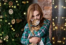 Beautiful young woman with cute cat near   tree at home Royalty Free Stock Image