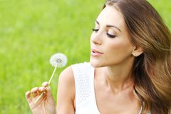 Beautiful young woman with dandelion Stock Photography