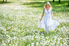 Beautiful young woman among dandelions Royalty Free Stock Photo