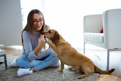 Beautiful young woman with dog playing at home. Portrait of beautiful young woman with dog playing at home Stock Photo