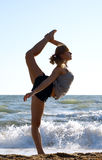 Beautiful young woman doing fitness exercise royalty free stock photography