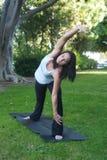 Beautiful young woman doing yoga Stock Photos