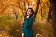 Beautiful young woman. Dramatic outdoor autumn portrait of sensual brunette female with long hair. Sad and serious girl. Royalty Free Stock Photography