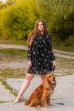 Beautiful and young woman in dress with dog in summer forest royalty free stock photography