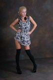 Beautiful young woman in dress and stockings Stock Photo