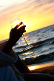 Beautiful Young Woman Drinking Wine On Beach Royalty Free Stock Photography