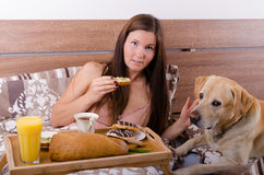 Beautiful young woman eating breakfast in bed in the morning with dog stock images