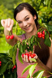 Beautiful young woman eats cherry on plantation Royalty Free Stock Photos