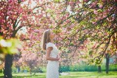 Woman enjoying her walk in park during cherry blossom season stock image