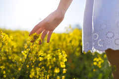 Beautiful young woman enjoying spring in a field. Royalty Free Stock Photos