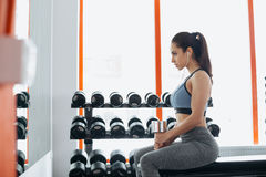 Beautiful young woman exercising with dumbbell in the gym. Stock Images