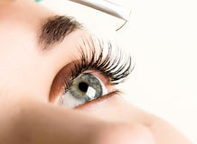 Beautiful young woman eyelash extension. Woman eye with long eyelashes. Beauty salon concept.  royalty free stock photos