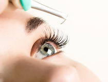Beautiful young woman eyelash extension. Woman eye with long eyelashes. Beauty salon concept Stock Photos