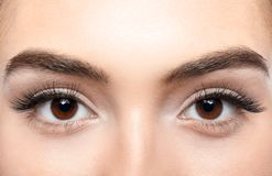 Beautiful young woman with eyelash extensions. Closeup stock images